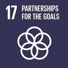 SDG 17 - Parterships for the Goals